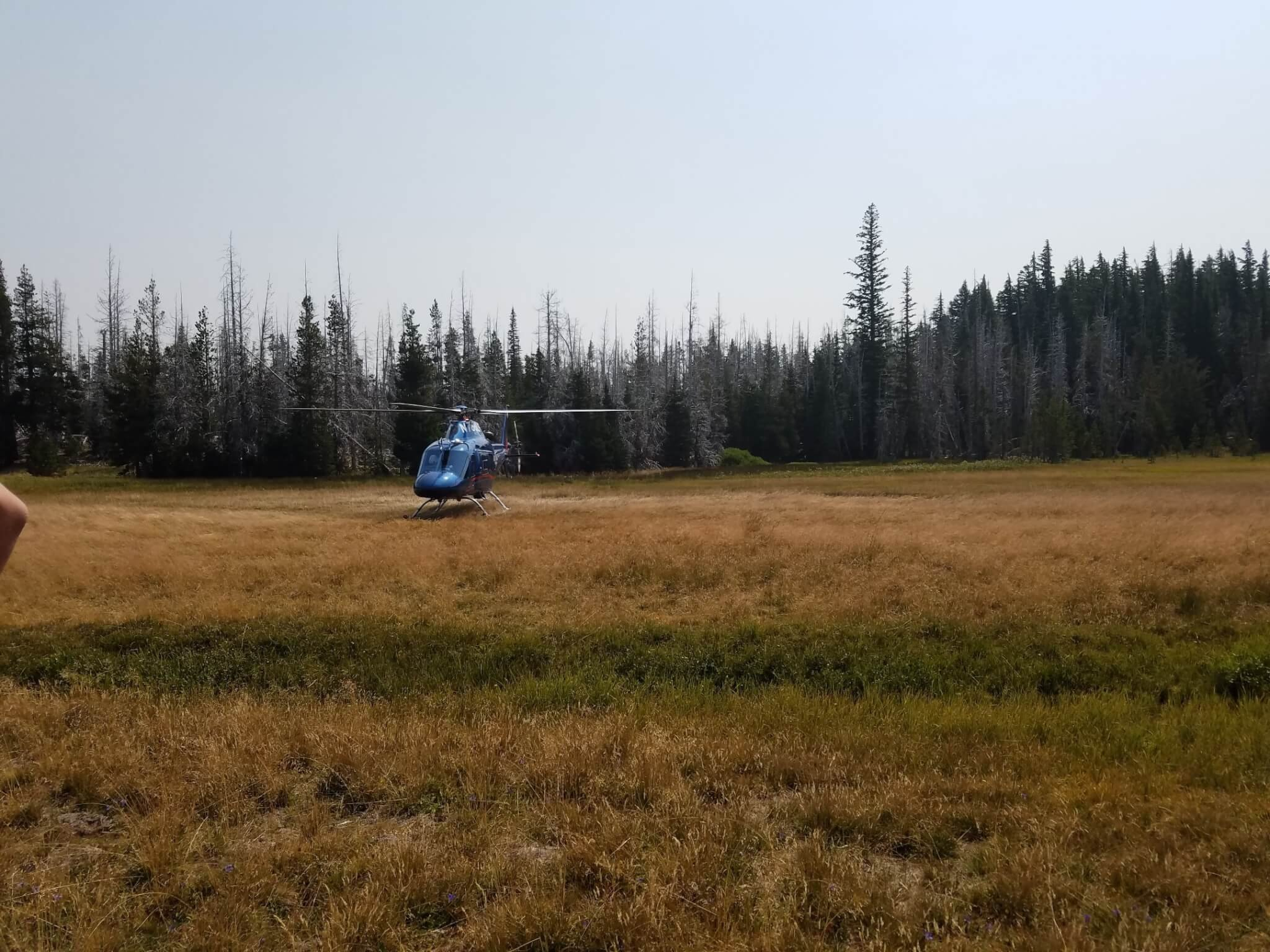 DCSO SAR ASSISTS HIKER ON PARK MEADOW TRAIL