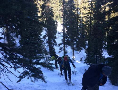 SNOWMOBILER'S RESCUED