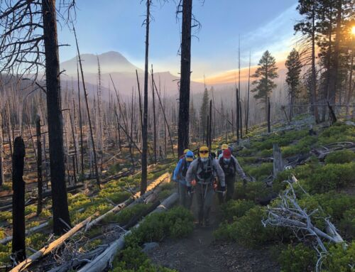 DESCHUTES COUNTY SHERIFF'S OFFICE SEARCH AND RESCUE ASSIST INJURED HIKER NEAR POLE CREEK TRAILHEAD